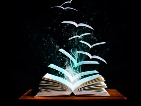 20156111347_livros260315